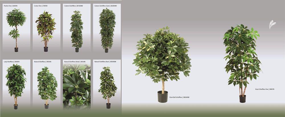 kunstpflanzen beiermeister fachgro handel f r. Black Bedroom Furniture Sets. Home Design Ideas