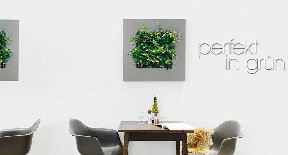 gr ne w nde beiermeister fachgro handel f r. Black Bedroom Furniture Sets. Home Design Ideas